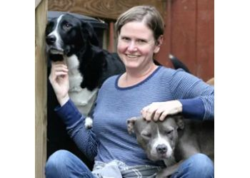 Durham dog walker Bull City Pet Sitting