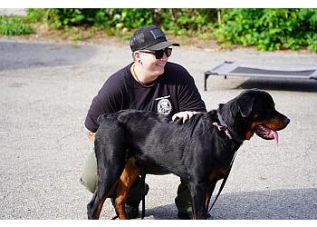San Antonio dog training Bulletproof Dog Training