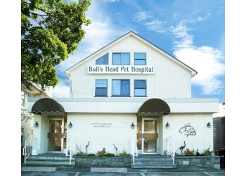 Stamford veterinary clinic Bull's Head Pet Hospital