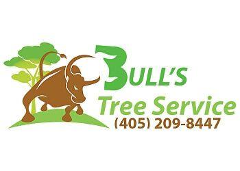 Oklahoma City tree service Bull's Tree Service