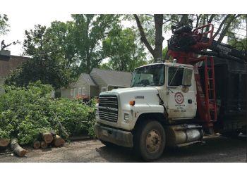 Montgomery tree service Bullseye Tree Service