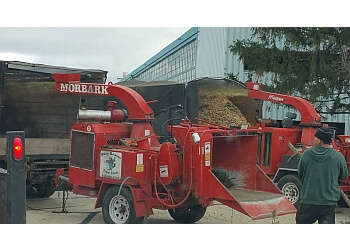 Rockford tree service Busy Beaver Tree Care