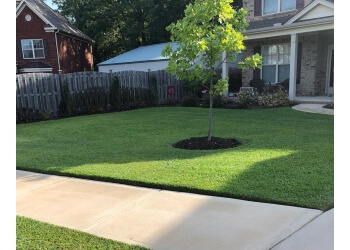 3 Best Lawn Care Services In Columbia Sc Expert