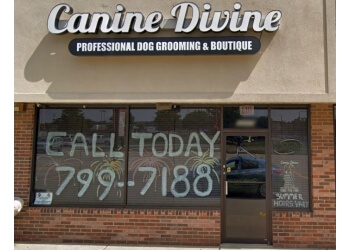 Sterling Heights pet grooming CANINE DIVINE LLC