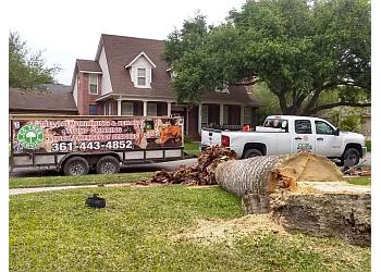 Corpus Christi tree service CC Tree Service