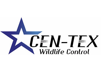Austin animal removal CEN-TEX Wildlife Control