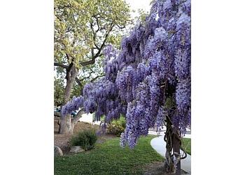 Thousand Oaks places to see CONEJO VALLEY BOTANIC GARDEN