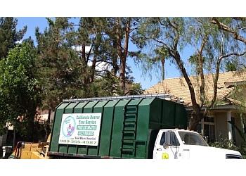 Fontana tree service Cal Beaver Tree Service?