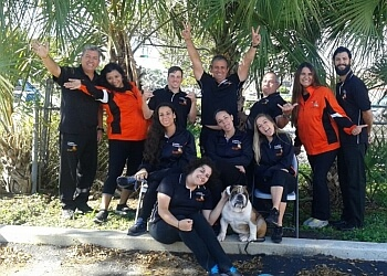 Miami dog training Canine Counselors