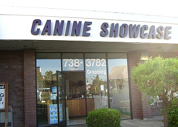 Sunnyvale pet grooming Canine Showcase