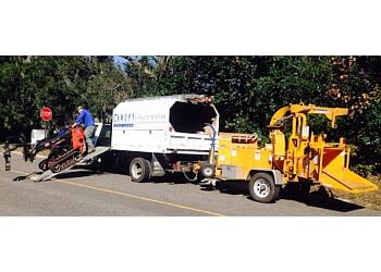 Charleston tree service Canopy Tree Care