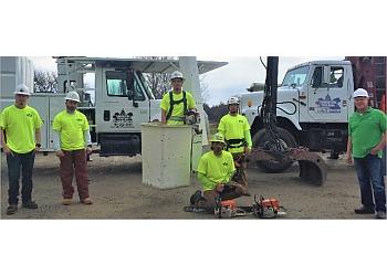 Topeka tree service Capital City Tree Care