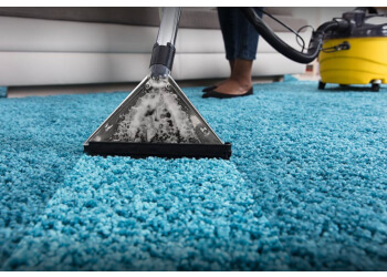 Berkeley carpet cleaner Captain Carpet Care