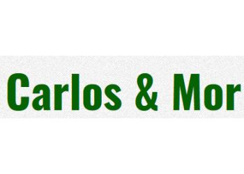 Chula Vista tree service Carlos & Mor