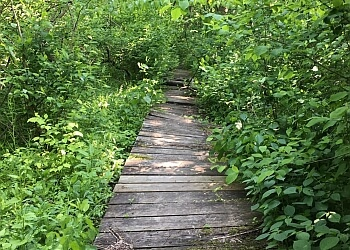 Springfield hiking trail Carpenter Park trail