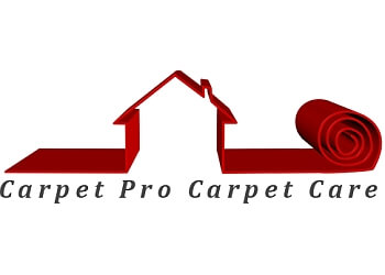 Arlington carpet cleaner Carpet Pro Carpet Care