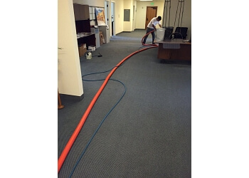 3 Best Carpet Cleaners In Hayward Ca Expert Recommendations