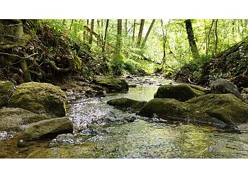 Atlanta hiking trail Cascade Springs Nature Preserve
