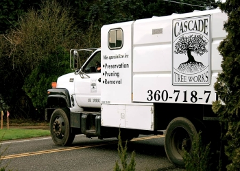 Vancouver tree service Cascade Tree Works