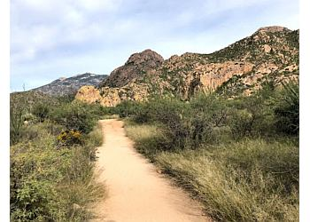 Catalina State Park Trail