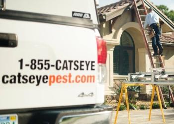 Hartford pest control company Catseye Pest Control