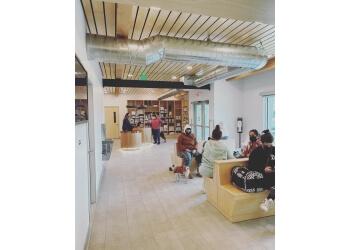 Fresno veterinary clinic Cedar Veterinary Hospital