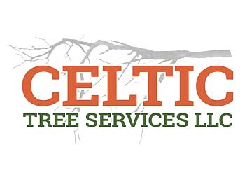 Bridgeport tree service Celtic Tree Services LLC