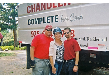 Concord tree service  Chandler's Complete Tree Care Inc.