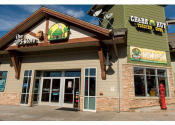 San Diego sandwich shop Cheba Hut Roasted Subs