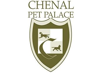 Chenal Pet Palace Little Rock Pet Grooming