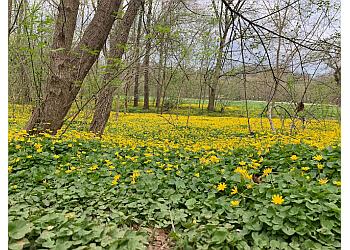 Louisville hiking trail Cherokee Park