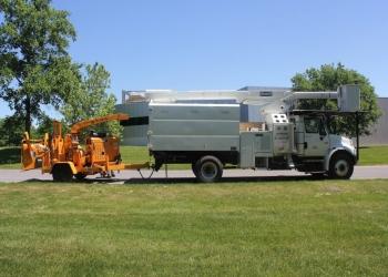Syracuse tree service Cherry Tree Service