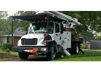 Mobile tree service Chestang Tree Service, Inc.