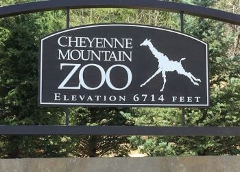 Colorado Springs places to see Cheyenne Mountain Zoo