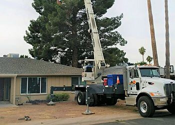 Phoenix tree service Chip Off The Old Block