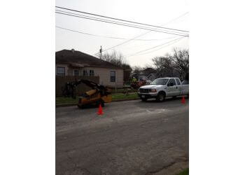 Irving tree service Chippers Tree Service