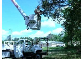 Jacksonville tree service Chip's Tree Service, LLC