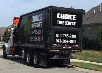 Kansas City tree service Choice Tree Service