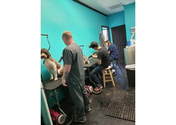 Huntsville pet grooming Christy's Canine Creations