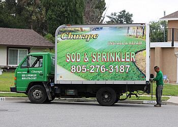 Simi Valley lawn care service Churape Landscape