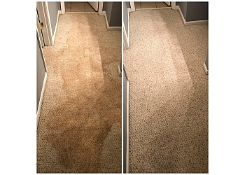 3 Best Carpet Cleaners In Atlanta Ga Expert Recommendations