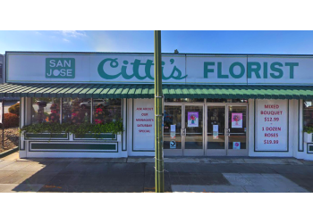 San Jose florist Cittis Florist