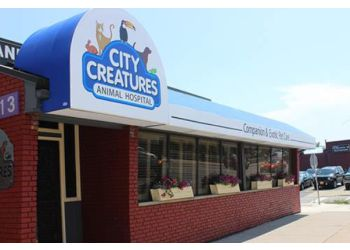 Buffalo veterinary clinic City Creatures Animal Hospital