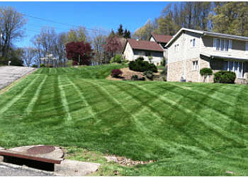 Akron lawn care service City Mowing
