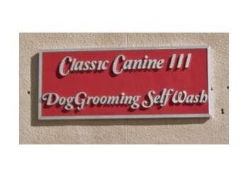 Henderson pet grooming Classic Canine III