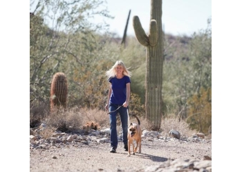 Scottsdale dog walker Cloud 9 Pet Sitting