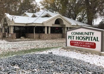 Thornton veterinary clinic Community Pet Hospital