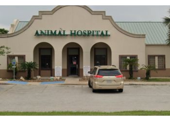 Brownsville veterinary clinic Companion Animal Hospital