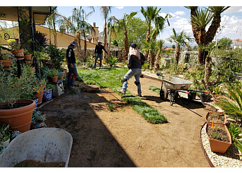 El Paso lawn care service  Complete Lawncare & Tree Service