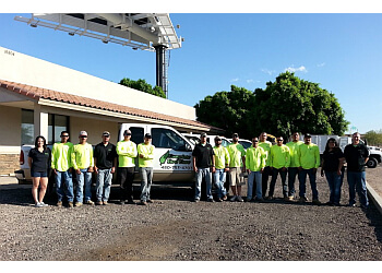 Chandler lawn care service Complete Yard Care